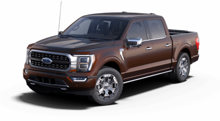 New 2021 Ford F-150 Platinum Truck for sale in Hardeeville, SC