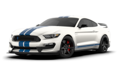 New 2020 Ford Shelby GT350 Shelby GT350R Coupe in Dade City, FL