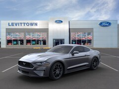 New 2020 Ford Mustang EcoBoost Coupe 1FA6P8TH7L5145099 in Long Island