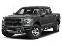 New 2019 Ford F-150 Raptor Truck SuperCrew Cab in Brooklyn, NY