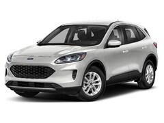 New 2020 Ford Escape SE SUV in Grand Rapids, MI