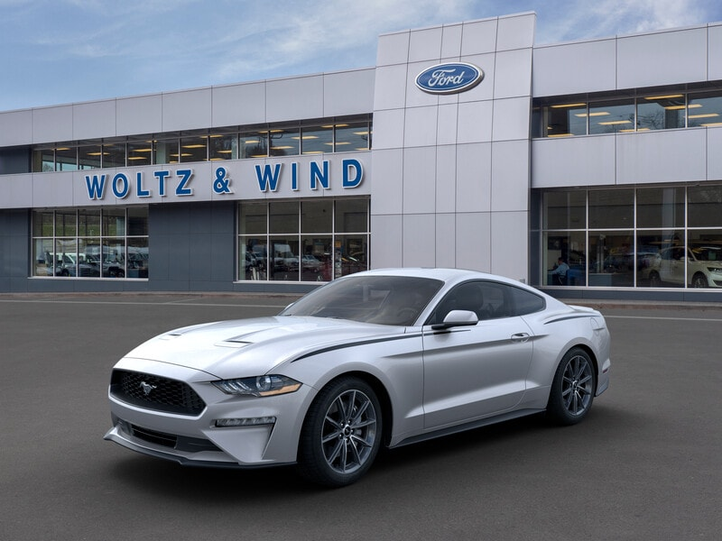 2019 Ford Mustang EcoBoost Coupe 1FA6P8TH1K5167730