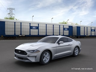 2021 Ford Mustang Ecoboost Fastback Coupe in Danbury, CT