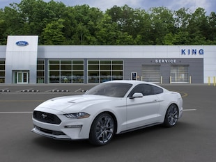 2020 Ford Mustang EcoBoost Premium Coupe 1FA6P8TH0L5132789