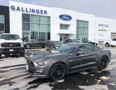 2015 Ford Mustang GT PERFORMANCE PACK ONLY 27000 KM SUMMER TOY!!! Coupe