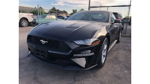 2019 Ford Mustang MANAGER'S SPECIAL!!!