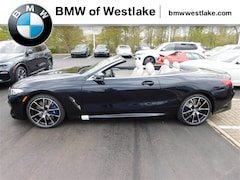 New 2019 BMW 8 Series M850i xDrive Convertible Near Cleveland
