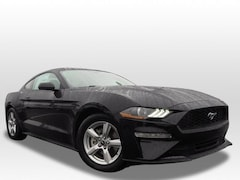 New 2019 Ford Mustang Ecoboost Coupe 19MU103 for sale in Barberton, OH at Ganley Ford