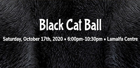 Lake Humane: Black Cat Ball Oct 17, 2020