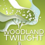 2017 Holden Arboretum Woodland Twilight Benefit