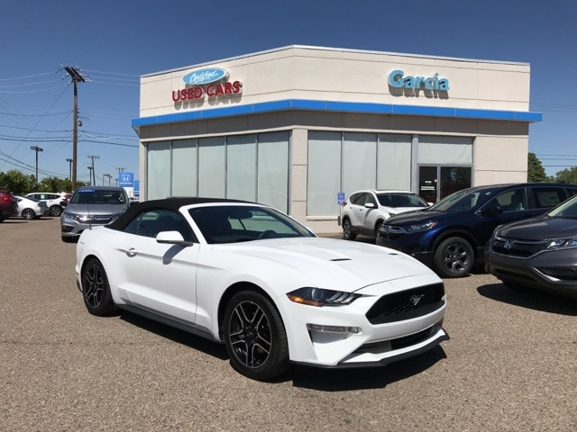 Ford Dealership Albuquerque >> Used 2019 Ford Mustang For Sale Albuquerque Nm 1fatp8uh8k5109499
