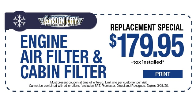 Cabin Filter Engine Air Filter