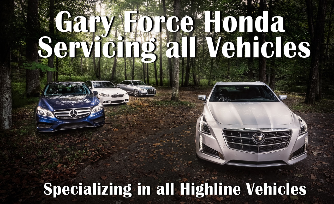 Mercedes Jaguar High Line Automotive Service Repair In Bowling