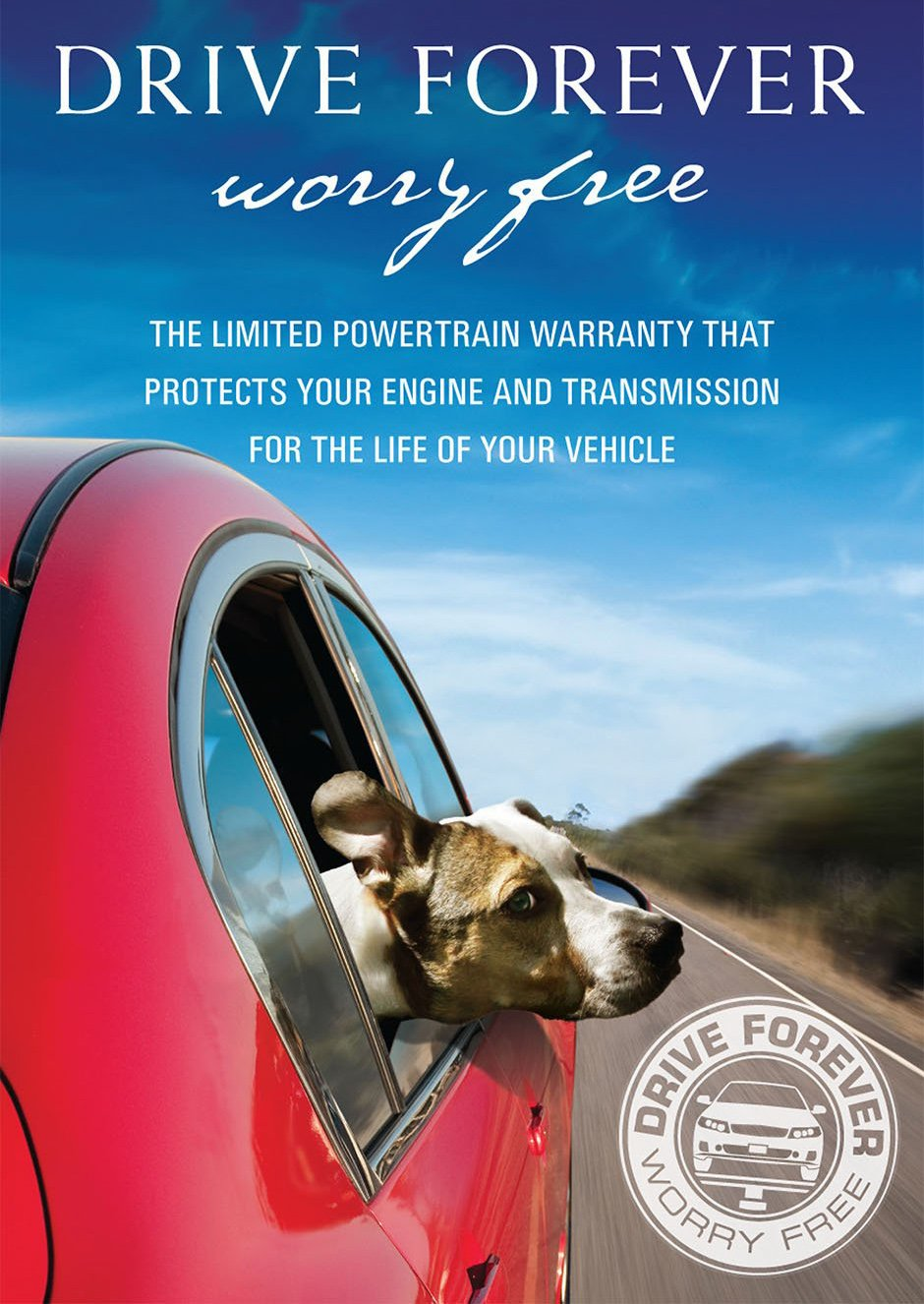 Whippet On Board Blue Personalised Dog On Board Car Safety Sign