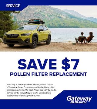 Pollen Filter Replacement