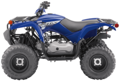 2019 YAMAHA Grizzly 90 YF09GKL