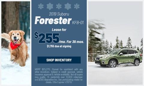 January '19 Forester Offer