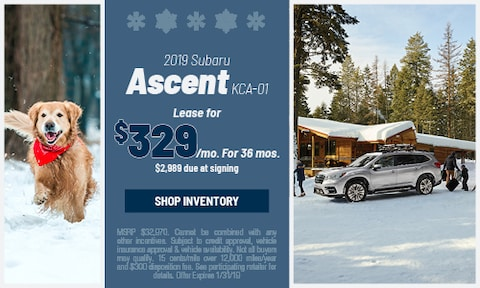 January '19 Ascent Offer