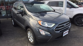 2019 Ford EcoSport 4 Wheel Drive (4WD)