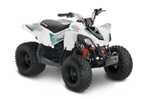 2018 CAN-AM DS 70