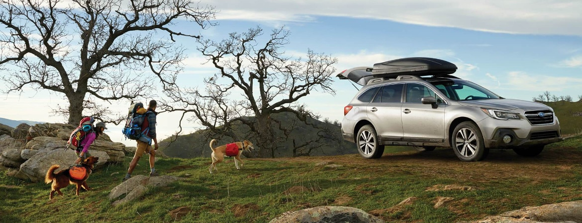 best subaru suvs for families, commuters and dogs image