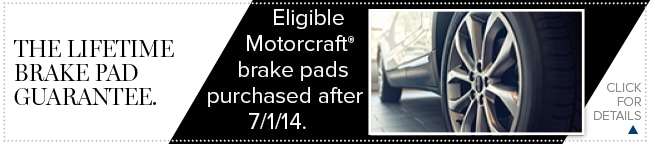 Brake Pad Coupon, Grapevine