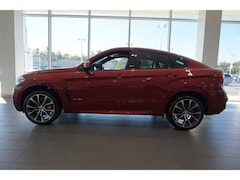 New 2019 BMW X6 xDrive35i SAV for sale in Knoxville, TN