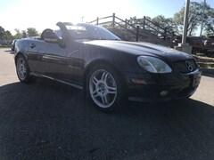 2004 Mercedes-Benz SLK-Class Base Convertible