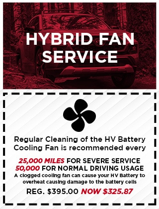 Hybrid Fan Service