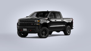 2021 Chevrolet Silverado 1500 Custom Trail Boss Truck