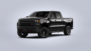2020 Chevrolet Silverado 1500 Custom Trail Boss Truck