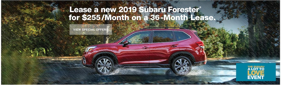 Lease a new 2019 Forester for $255/Month