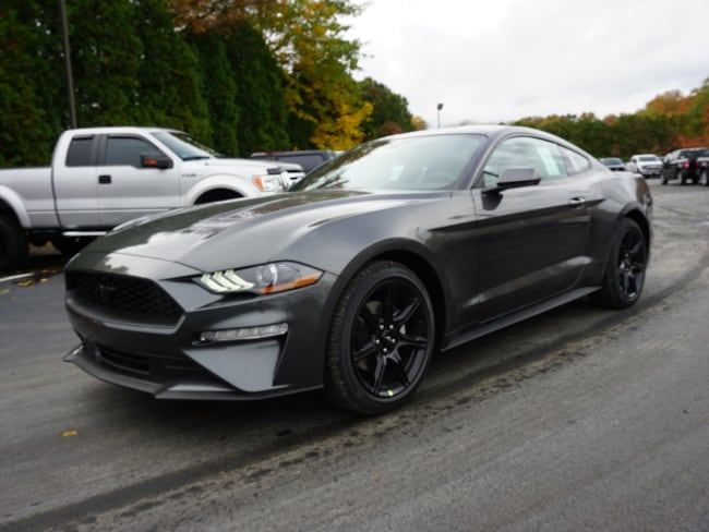 New 2019 Ford Mustang Ecoboost Coupe for sale in East Windsor, NJ at Haldeman Ford Rt. 130