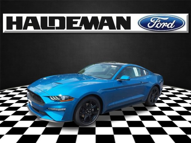 2019 Ford Mustang Ecoboost Coupe Trenton