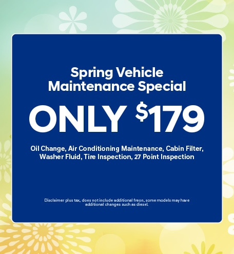 Spring Vehicle Maintenance Special