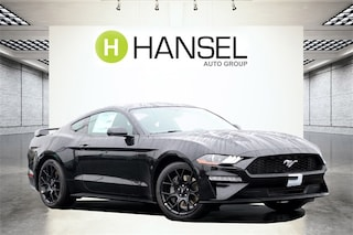 2019 Ford Mustang Ecoboost Coupe 1FA6P8TH8K5125913