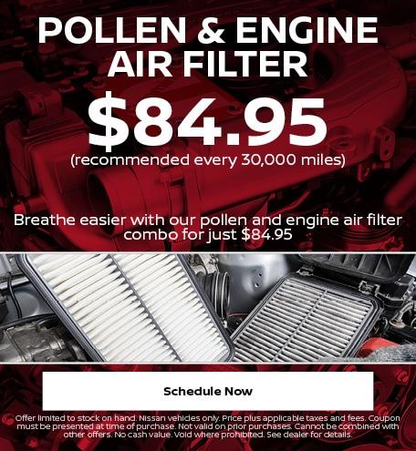 Pollen & Engine Air Filter