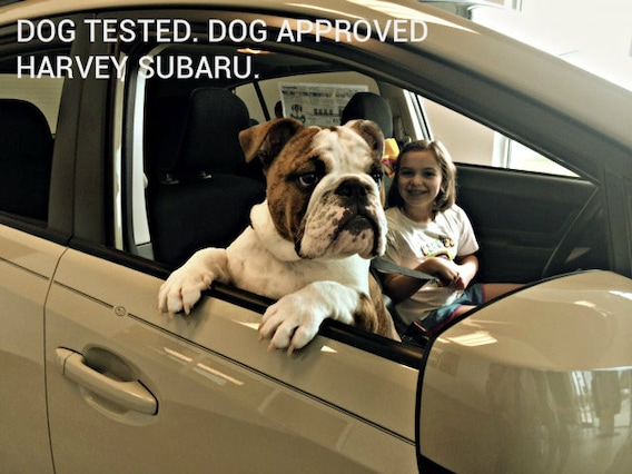 harvey subaru near shreveport new used subaru cars in bossier city service parts loans harvey subaru near shreveport new