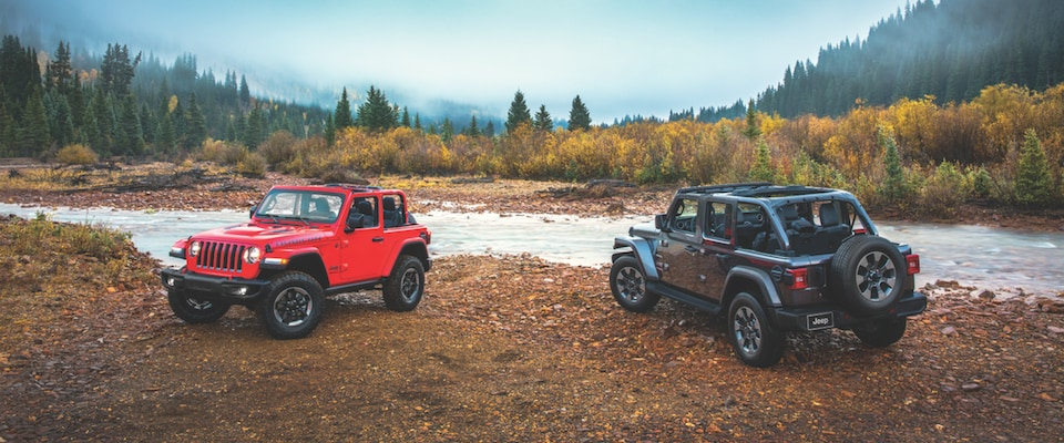 Two Jeep Wranglers parked by a stream in a forest