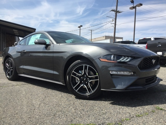 2019 Ford Mustang Ecoboost Coupe 1FA6P8TH2K5166814 F9095
