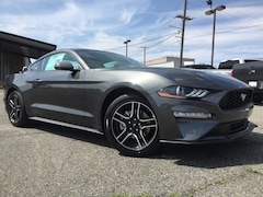 New 2019 Ford Mustang Ecoboost Coupe 1FA6P8TH2K5166814 F9095 in Minden, LA