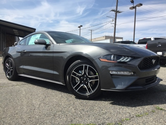 New 2019 Ford Mustang Ecoboost Coupe 1FA6P8TH2K5166814 in Minden, LA