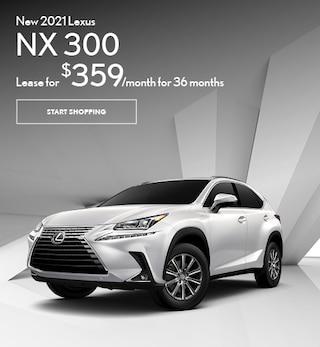 2021 NX 300
