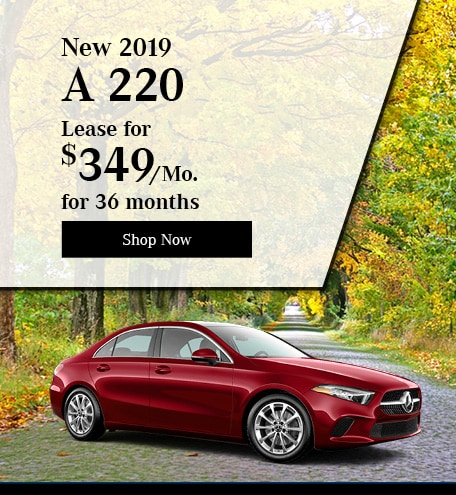 New 2019 A 220