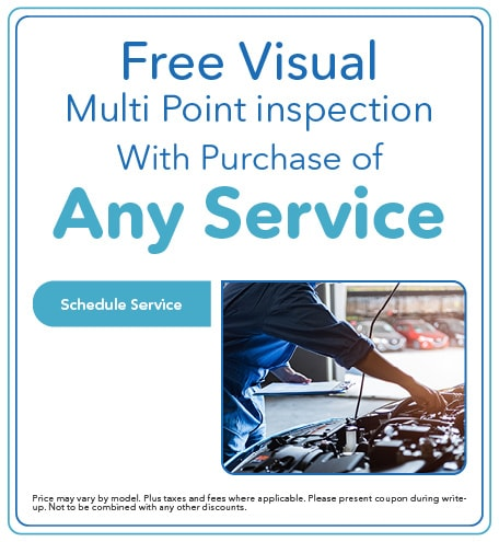 Free Visual Multi Point inspection - April 2021