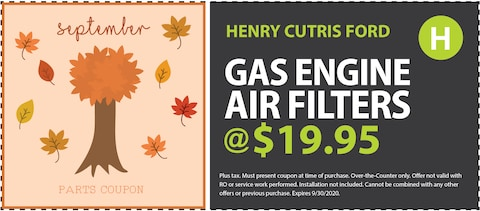 Gas Engine Air Filters