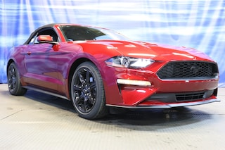 New Ford cars, trucks, and SUVs 2019 Ford Mustang Convertible for sale near you in Braintree, MA