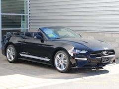 New 2019 Ford Mustang Convertible Boston, MA