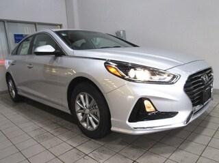New 2019 Hyundai Sonata SE Sedan for sale near you in Auburn, MA