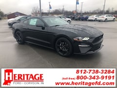 2019 Ford Mustang Ecoboost Coupe 1FA6P8TH3K5147494